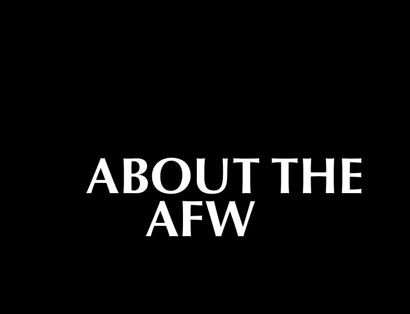 About the Academy of Film Writing - AFW